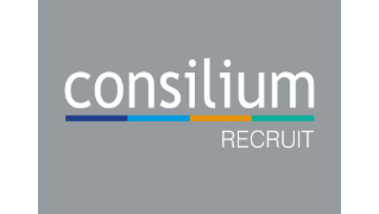 Consilium Salary Guide 2017